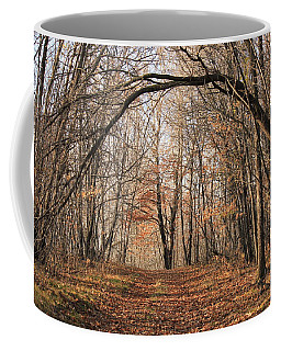 Coffee Mug featuring the photograph Autumn In The Woods by Penny Meyers