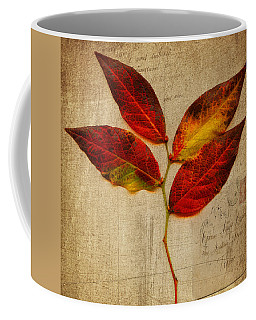 Autumn Leaf With Texture Coffee Mug