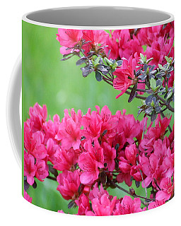Coffee Mug featuring the photograph Azalea by Andrea Anderegg