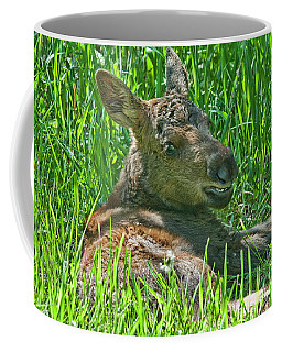 Baby Moose Coffee Mug