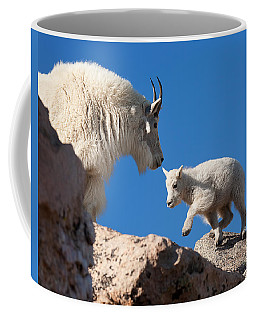 Coffee Mug featuring the photograph Baby Steps by Jim Garrison