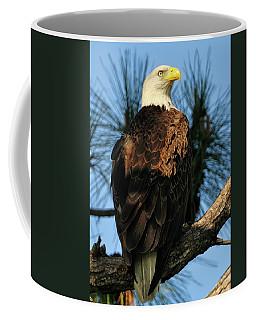Bald Eagle At The Cape Coffee Mug