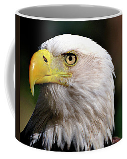 Bald Eagle Close Up Coffee Mug