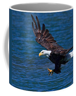 Coffee Mug featuring the photograph Bald Eagle On The Hunt by Beth Sargent