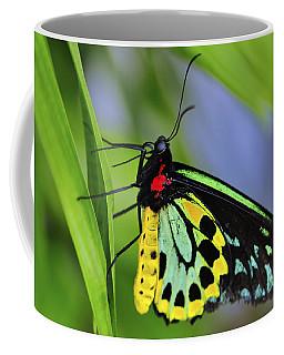 Bali Butterfly Coffee Mug