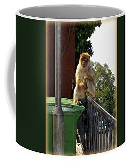 Barbary Ape Coffee Mug