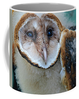 Barn Owlet Coffee Mug