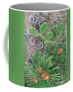 Coffee Mug featuring the photograph Beach Cactus In The Pines  by Nancy Patterson