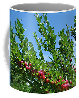 Coffee Mug featuring the photograph Beach Plums In Blue by Nancy Patterson