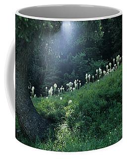 Bear-grass Ridge Coffee Mug by Sharon Elliott