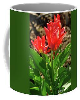 Beauty In Red Coffee Mug