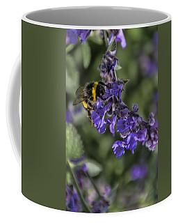 Coffee Mug featuring the photograph Bee by David Gleeson