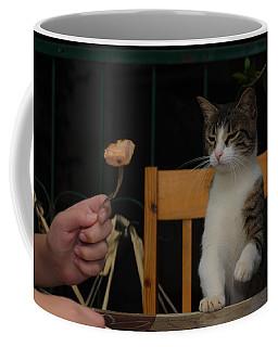 Before The Attack Coffee Mug