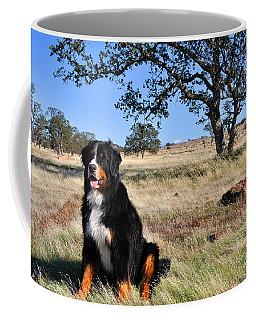Bernese Mountain Dog In California Chaparral Coffee Mug
