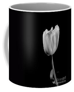 Black And White Tulip Coffee Mug