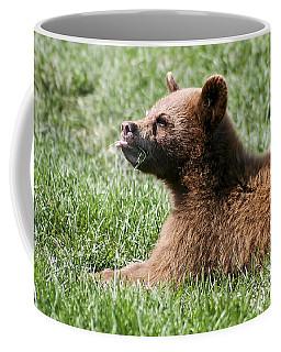 Black Bear Cub I Coffee Mug