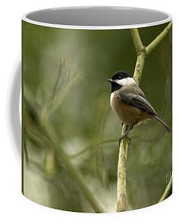 Black-capped Chickadee With Branch Bokeh Coffee Mug by Sharon Talson