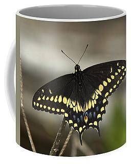 Black Swallowtail Din103 Coffee Mug