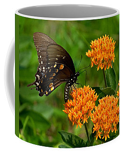 Black Swallowtail Visiting Butterfly Weed Din012 Coffee Mug