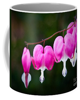 Coffee Mug featuring the photograph Bleeding Hearts 001 by Larry Carr