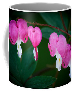 Coffee Mug featuring the photograph Bleeding Hearts 002 by Larry Carr