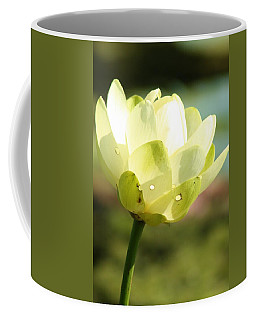 Blooming Water Lily Coffee Mug by Bruce Bley