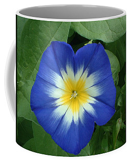Coffee Mug featuring the photograph Blue Burst by Bonfire Photography