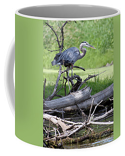 Coffee Mug featuring the photograph Blue Heron At The Lake by Debbie Hart