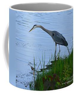 Blue Heron Coffee Mug by Gordon Mooneyhan