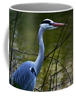 Blue Heron Vondelpark Amsterdam Coffee Mug