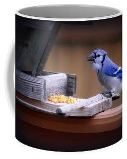 Coffee Mug featuring the photograph Blue Jay On Backyard Feeder by Kay Novy