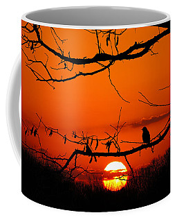 Bluebird Dawn Coffee Mug