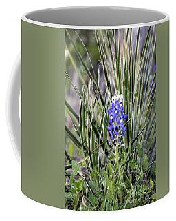Bonnet Spines Coffee Mug