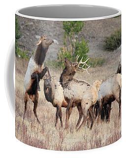 Boxing Match Coffee Mug