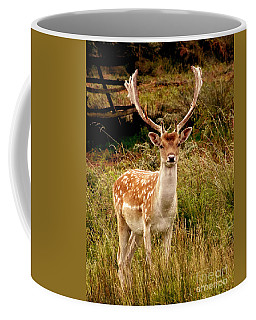 Wildlife Fallow Deer Stag Coffee Mug by Linsey Williams