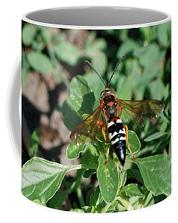 Coffee Mug featuring the photograph Break Time by Thomas Woolworth