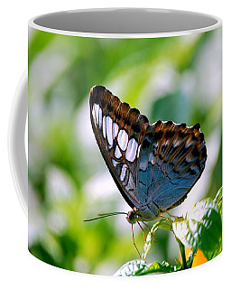 Coffee Mug featuring the photograph Bright Blue Butterfly by Peggy Franz