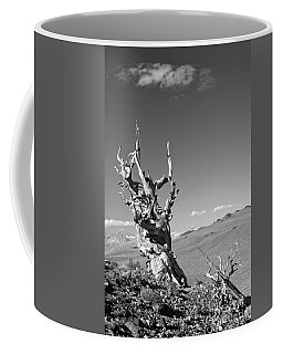 Bristlecone Pine And Cloud Coffee Mug