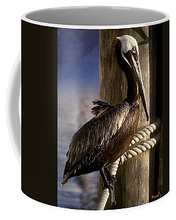Coffee Mug featuring the photograph Brown Pelican In Key West 9l by Gerry Gantt
