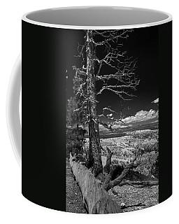 Bryce Canyon - Dead Tree Black And White Coffee Mug