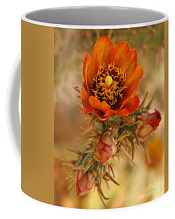 Buckhorn Cholla 2 Coffee Mug