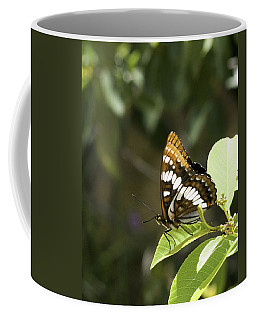 Coffee Mug featuring the photograph Butterfly At Rest by Betty Depee