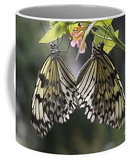 Coffee Mug featuring the photograph Butterfly Duo by Eunice Gibb