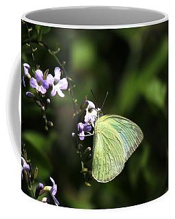 Coffee Mug featuring the photograph Butterfly On Purple Flower by Ramabhadran Thirupattur