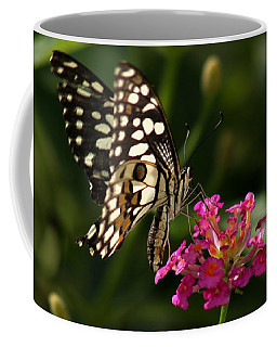 Coffee Mug featuring the photograph Butterfly by Ramabhadran Thirupattur