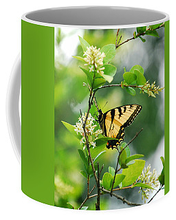 Coffee Mug featuring the photograph Butterfly Tiger Swallow by Peggy Franz