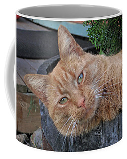 Coffee Mug featuring the photograph Butters by Lara Ellis