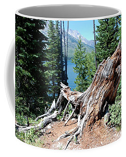 Coffee Mug featuring the photograph By Jenny Lake by Dany Lison