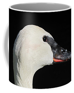 Trumpeter Swan Coffee Mug by Maciek Froncisz