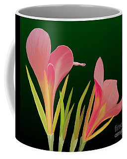 Canna Lilly Whimsy Coffee Mug by Rand Herron